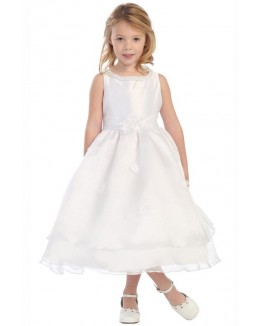 Elegant Pearl Neckline Organza Overlaid Dress